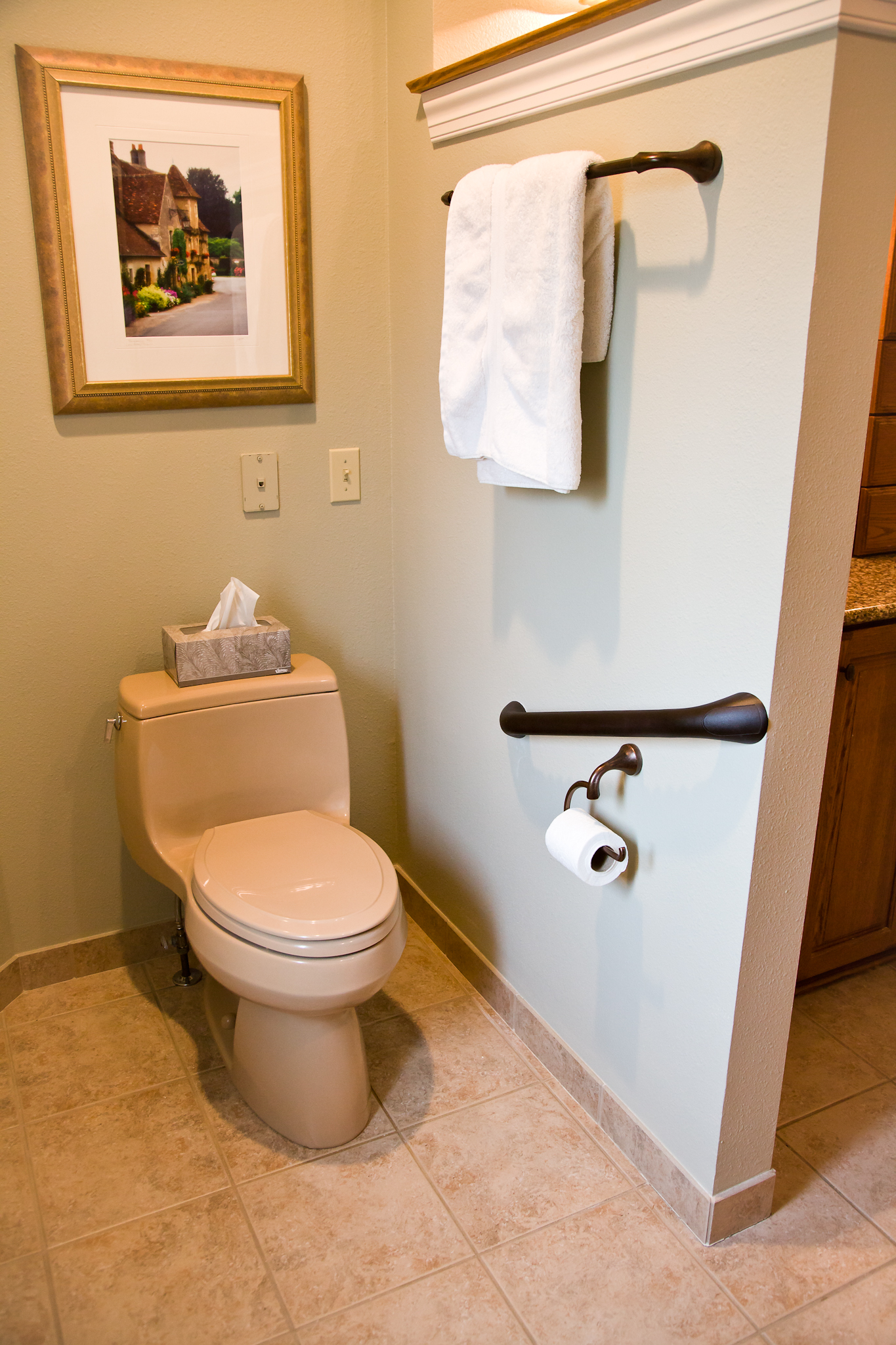 Smart accessible living toilet grab bar - Handicap bars for bathroom toilet ...