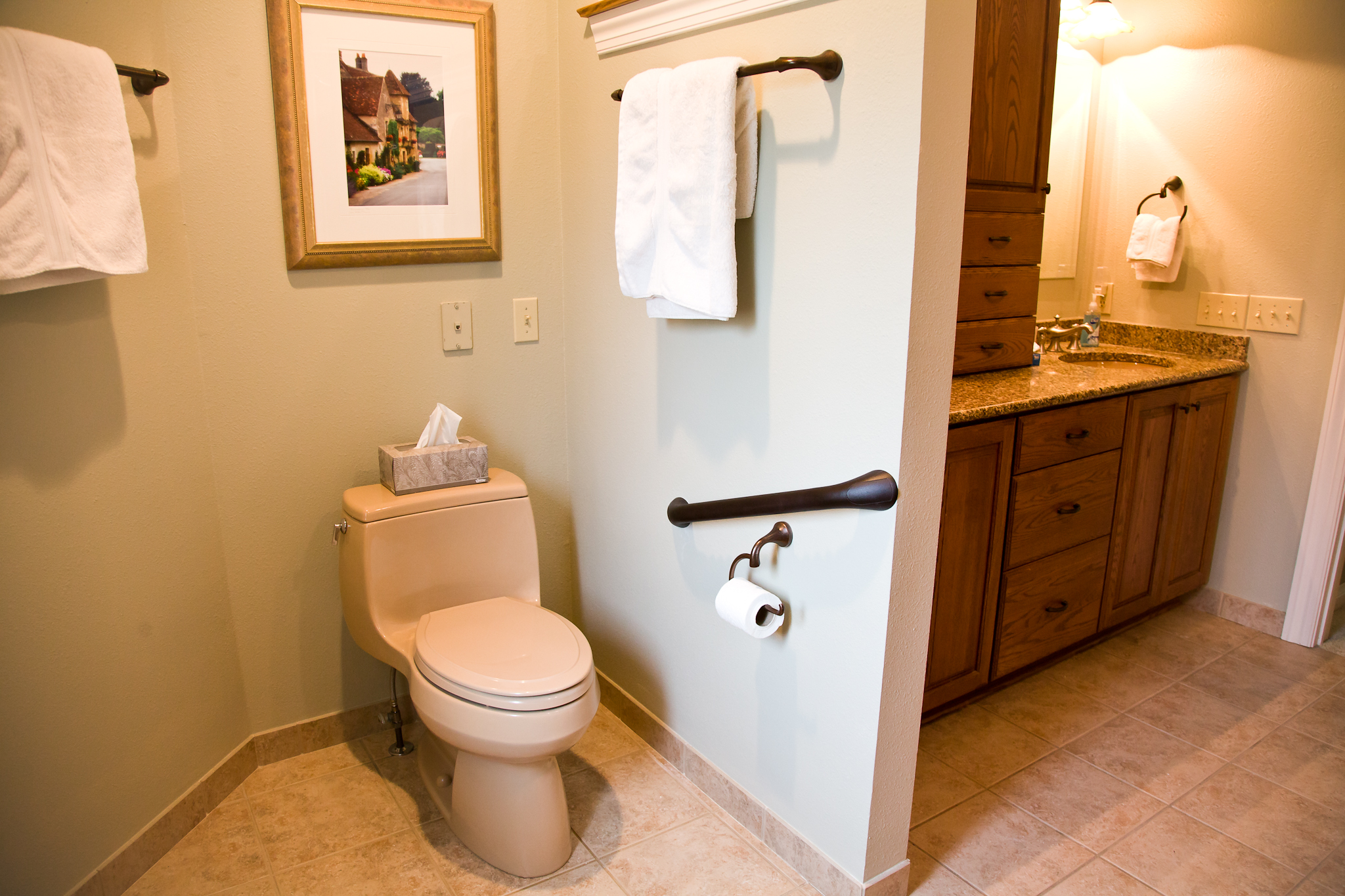 Smart Accessible Living Bathrooms