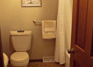 Bathroom & Shower Update